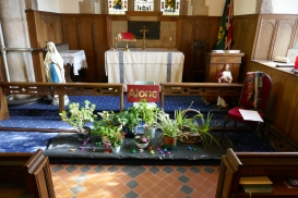 A display of house plants in the Lady Chapel to represent the Garden of Gethsemane